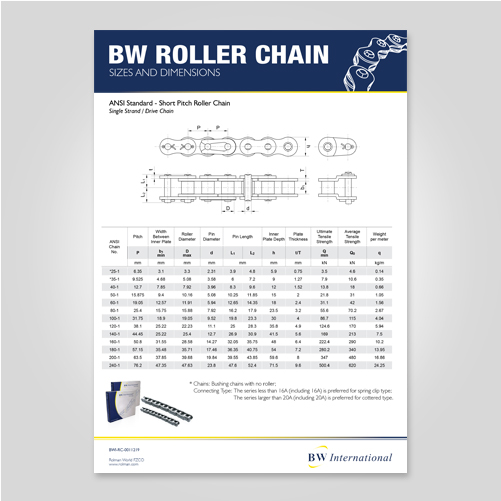 BW ANSI roller chain