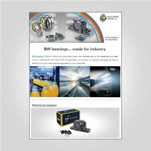 BW bearings expanding range